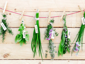 """Parsley, Sage, Rosemary and Thyme: The Latest """"Superfoods""""?"""