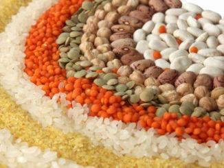 5 Ways to Celebrate World Vegetarian Day on October 1