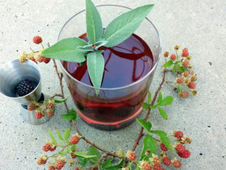 Wild Blackberry Negroni
