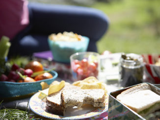 Celebrating National Picnic Month