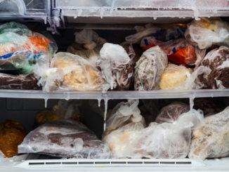 Frozen Food Tips for Foodies