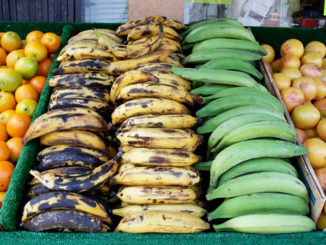 The Difference Between Bananas and Plantains