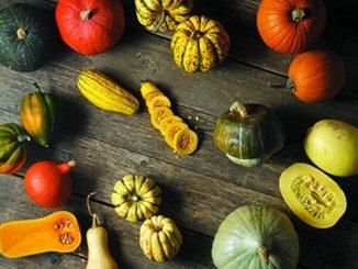 Winter Squash: Go Beyond Popular Pumpkin and Butternut