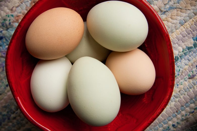 Why Are Some Egg Yolks And Eggshells Different Colors Food Nutrition Magazine