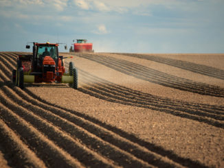 Spring Forward: Farm Bill Updates and Challenges