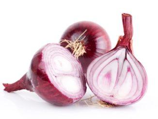 Savor: Onions