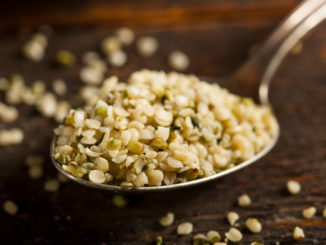 Hemp Seeds Join the Super-Food Cool-Kids Table
