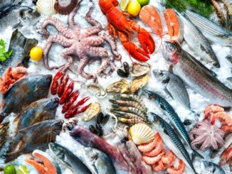 Scared to Cook Fish? Discover Seafood's Splendor
