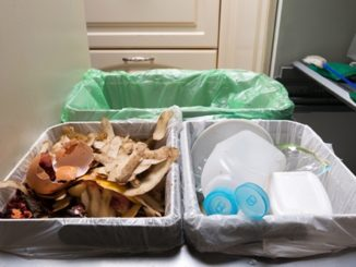 Ready for Kitchen Composting? Get Started with These Tips