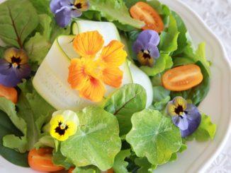 Foraged Food Trend Is Part Epicurean, Part Environmental