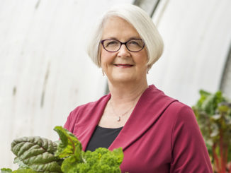Dayle Hayes: A Powerful Voice Supporting School Meals