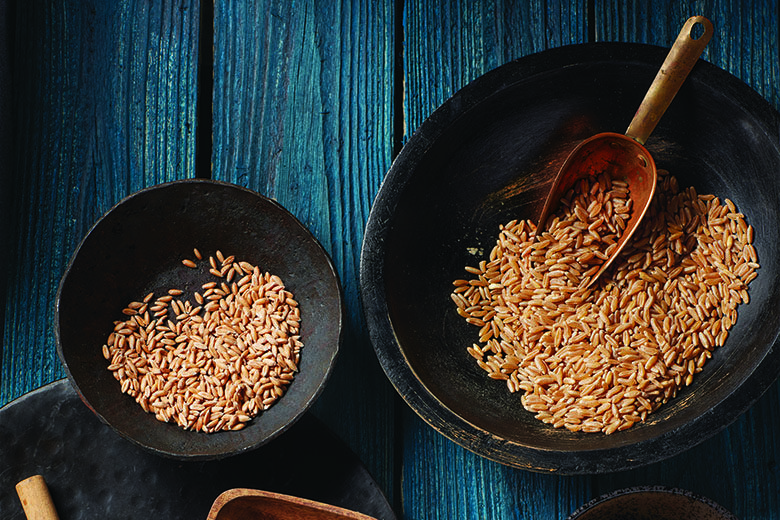 Grain Berries: Kernels of Nutrition | Food & Nutrition Magazine | Volume 9, Issue 2