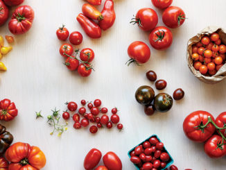 From the Vine: Treasure the Many Types of Tomatoes
