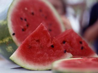 Watermelon Pizzas for Kids