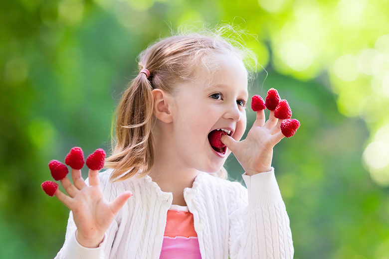 Child picking and eating raspberry