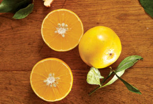 Citrus Appeal: Squeeze in Flavor and Nutrition