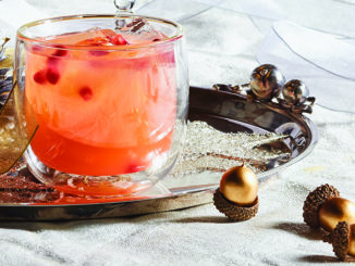 Cranberry Citrus Chili Spritz