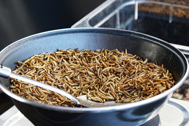fried mealworms at street food market