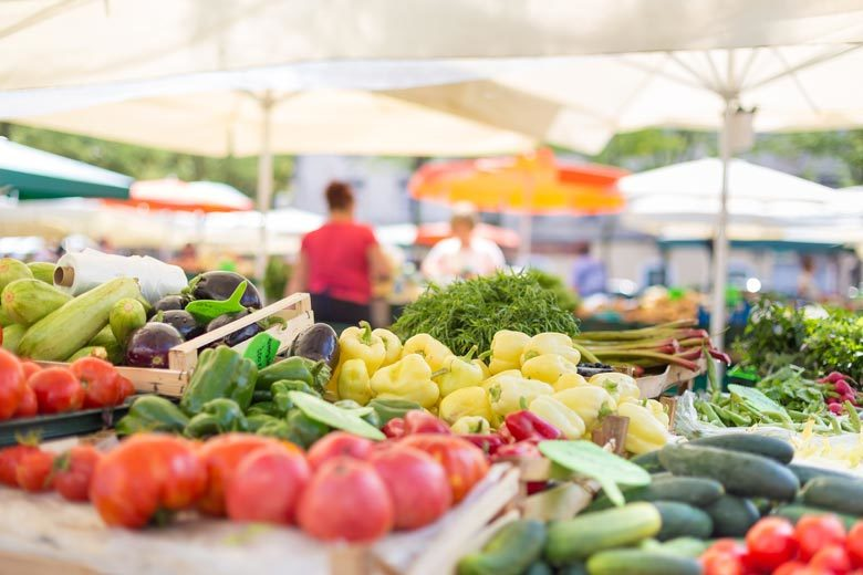 Incorporating Food Literacy into the Dietetic Internship and Practice | Food & Nutrition | Student Scoop