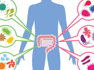 Stopping the Leak: Leaky Gut, Leaky Brain and Beyond