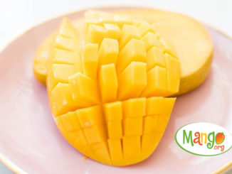 Make It with Mango