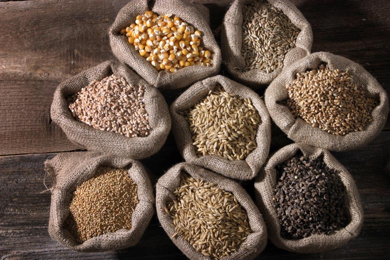 Explore New Foods and Flavors with Whole Grains   Food & Nutrition   Stone Soup