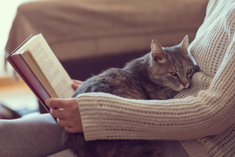 A woman reads with a cat cuddling on her lap