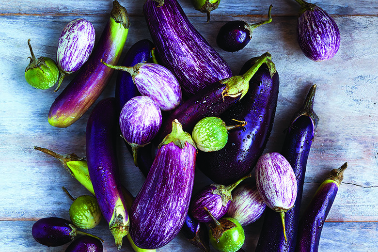 Different varieties of eggplant scattered about